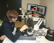 AFM-MFM mikroskopie